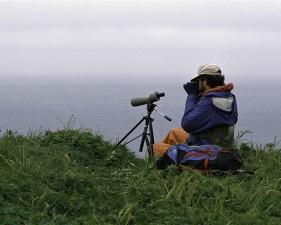 fotógrafo, miradas, viviendo, mundo, costa