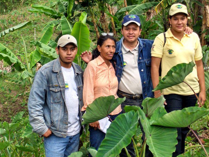 rural, les agriculteurs, gagne, de plus en plus, plus haut, la valeur, les cultures, Malanga, légumes