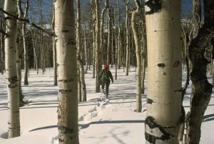 snowshoeing, wildness
