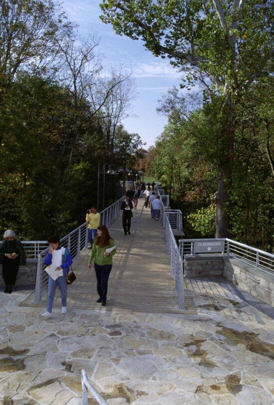 students, walking, bridge
