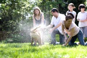 mère, jeune, fille, fils, savonnage, vers le bas, les chiens, manteau, père, stabilisatrice, animal de compagnie