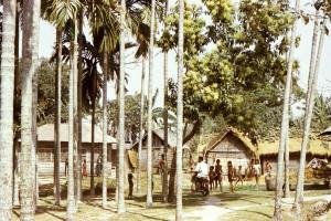 village, scene, streets, small, town, Bangladesh
