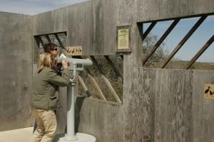 visitors, spotting, scope, blind, favorite birds
