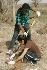 volunteers, enjoy, planting, trees