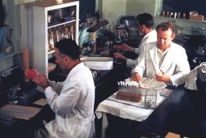 bakteriologija, laboratorij, tehničari, sudjelovanje, bakteriologija, laboratorij