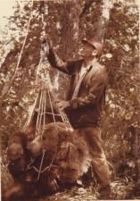 biólogo, pesaje, oso pardo
