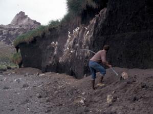la capture, les oiseaux, les rochers