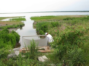 employé, les tests, l'eau, la qualité, la rivière