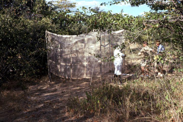 Epidemiološki, polje, istražitelji, fotografirali