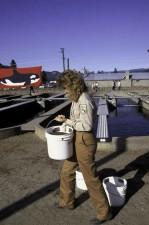 femeie, pescuit, biolog