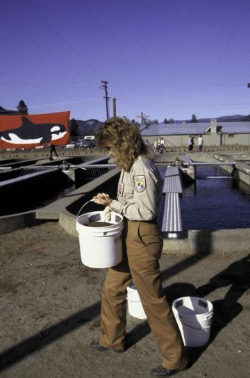 žena, rybolovu, biológ