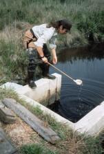 female, taking, samples