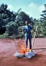incinérant, matériaux, traitement, ebola, patients