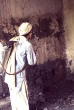 la malaria, il controllo, lavoratore, dimostrando, malathion, a spruzzo, tecnica