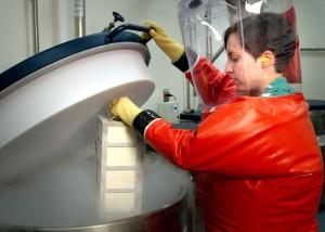 microbiologo, speciali, agenti patogeni, ramo, il personale, membro, di processo, l'inserimento cremagliera, scatole