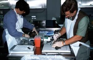 nhà tự nhiên học, nhà khoa học, nhà sinh vật học, làm việc, Phòng thí nghiệm