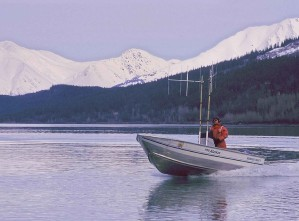 Tracking, Bewegungen, Radio, etikettiert, Fisch, Wasser, Skiff, Boot