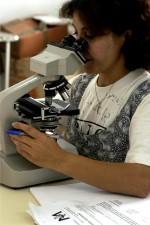 vrouwen, kliniek, Microscoop, laboratorium, wetenschapper, werk, Bureau