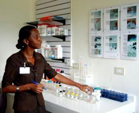 Gvajana, zdravlje, kvaliteta, sigurnost, mini, laboratorij