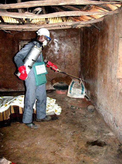 operatora, prskanje, zidova, kuća, insekticid