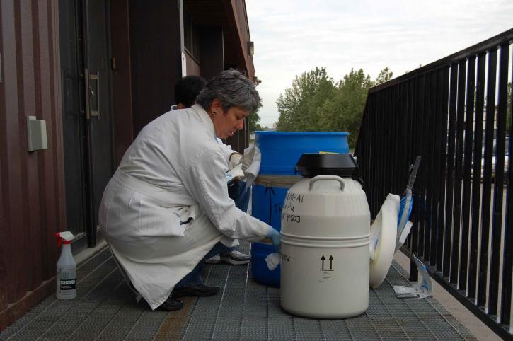 rengjøring, influensa, transport, beholdere