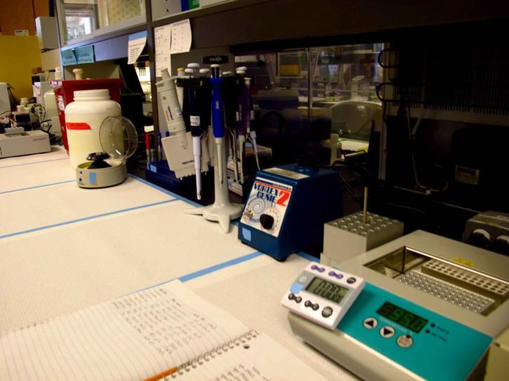 instrumentación, registrado, los datos, la genética, laboratorio