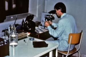 hématologue, examinés, du sang, des échantillons, des patients