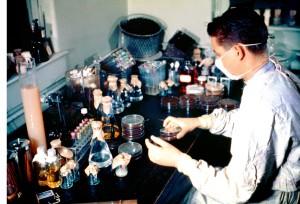 laboratorian, working