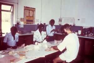 medical, research, staff, Segbwema