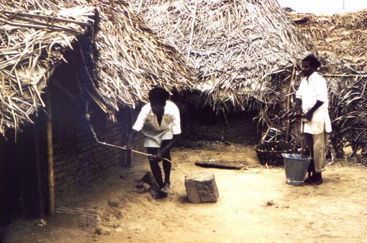 мъже, село, Индия, пръскане, инсектицид, dichlorodiphenyltrichloroethan