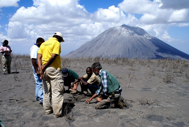 Các nhà khoa học, đánh giá, Ashfall, gần đây, phun trào, Doinyo, Lengai, núi lửa, Tanzania