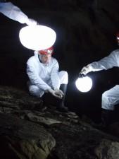 scientifiques, blanc, travail, grand, blanc, lampes