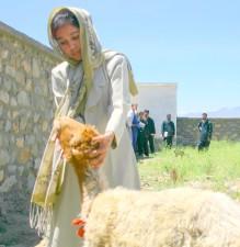 first, woman, enroll, para, veterinarian, training, program, running, Afghanistan