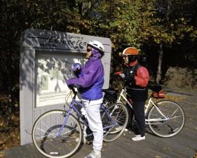 Bisiklet, chincoteague, vahşi, sığınak