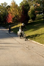 dad, two, young children, bicycling