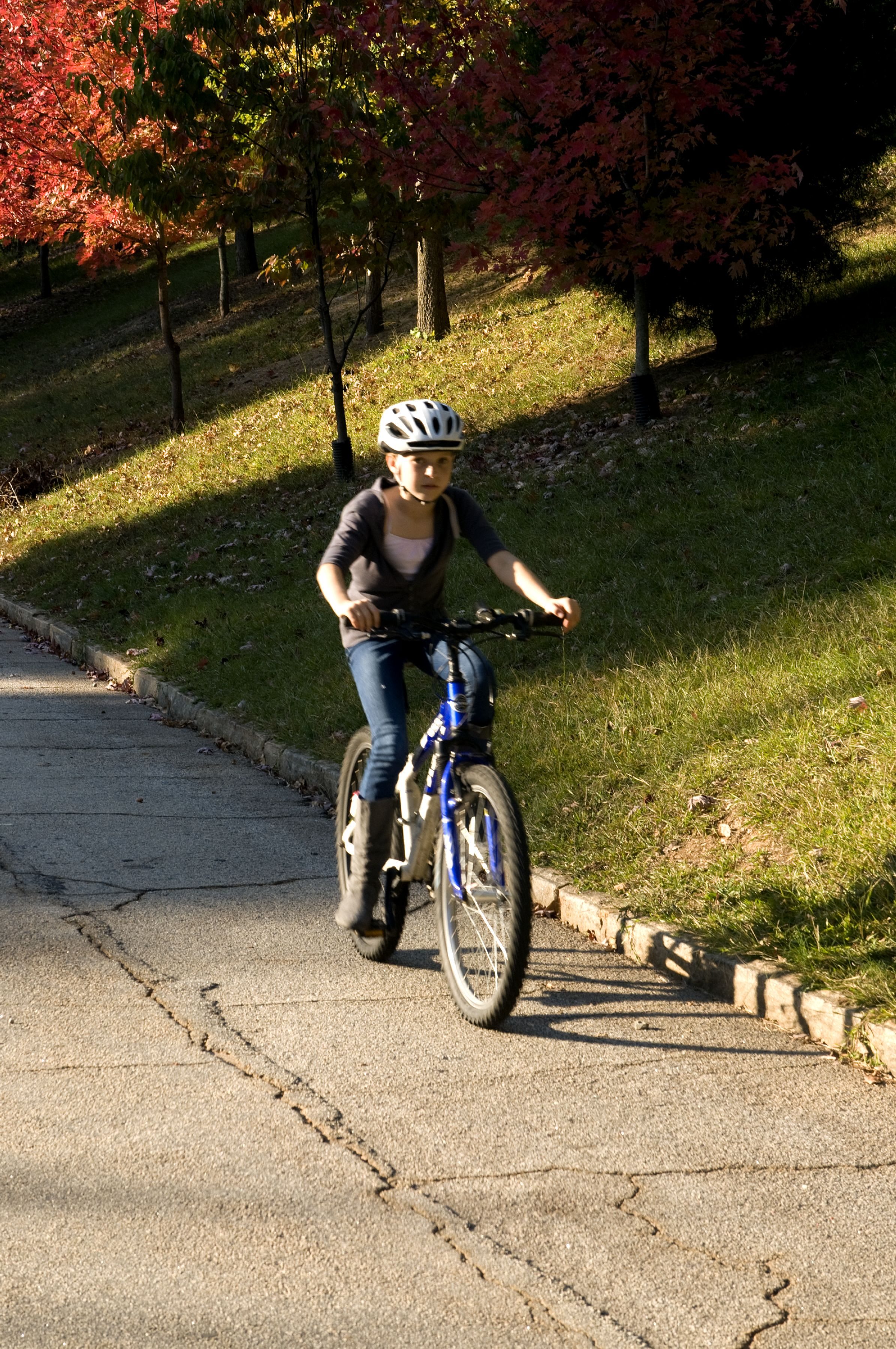 Free photograph; young, girl, riding, bicycle