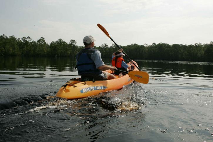 adulte, enfant, apprécier, pagayer, kayak