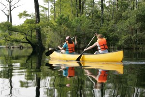 canoers, enjoy, calm, day, water