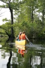 canoers, paddle, up-close, shore