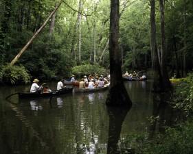kanui, vode, močvare, područje