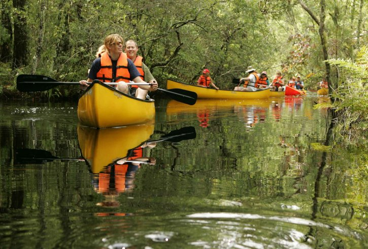 group, people enjoying, canoe, tour