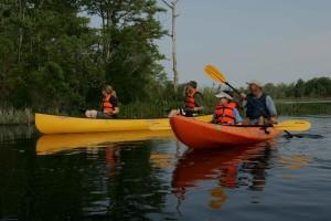 Kanuten, genießen, Tag, Wasser