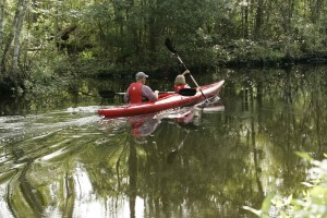 kayakers, genieten, water