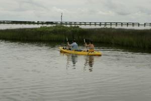 kayakers, head, noon, exercise, wildlife, viewing
