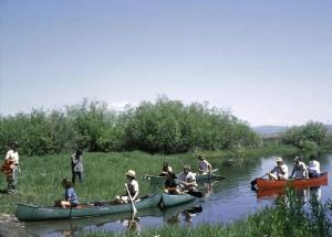 Menschen, Kanu fahren, wild, natur