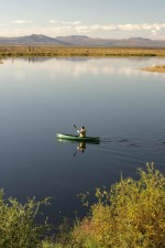 solo, canoenist, paddling, calm, waters