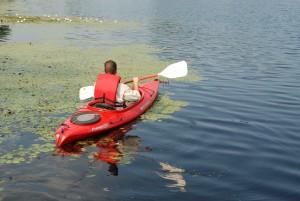 sportist, relaxing, canoe, ride, quiet, river