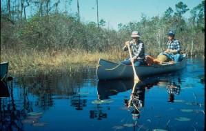 two, men, paddle, canoe