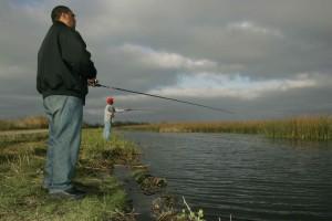 bon, jour, pêche