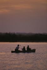 groupe, trois, pêcheurs, profiter, coucher de soleil, canoë